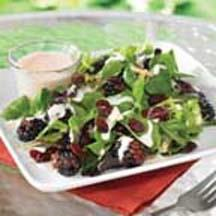 Fruity Green Salad with Ruby Pomegranate Dressing.