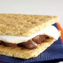 Turtle S'Mores.