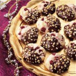 Chocolate Dipped Cranberry Cookies recipe