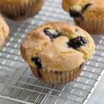 Blueberry Delight Muffins recipe