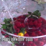 Champagne Reception Punch recipe