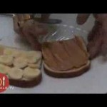 Grilled Chocolate Peanut Butter Banana Sandwiches recipe