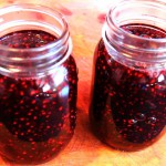 Homemade Berry Jam recipe
