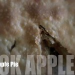 Mock Apple Pie with Crackers recipe