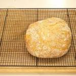 Wheat Bran Bread recipe